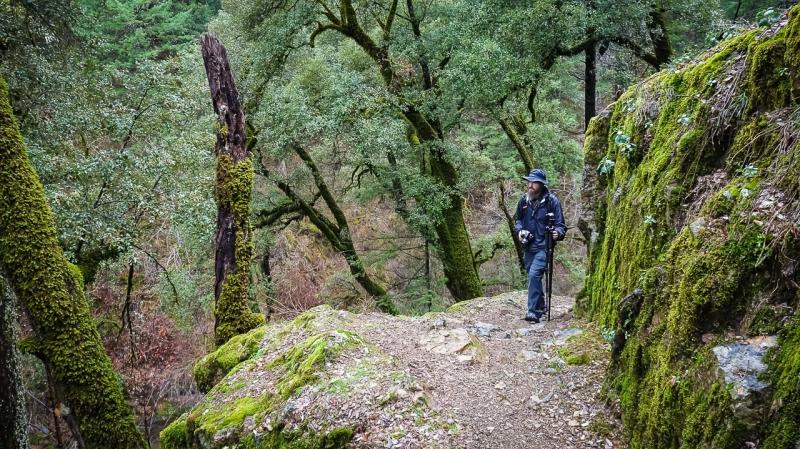 Scott hiking in NorCal